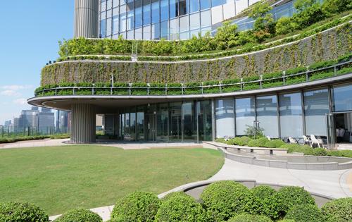 Park View garden (the sixth floor)