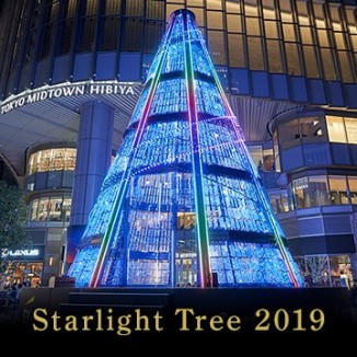 Starlight Tree 2019